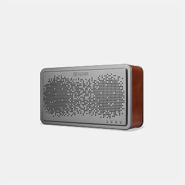 Bluetooth Wireless Speaker BS-221